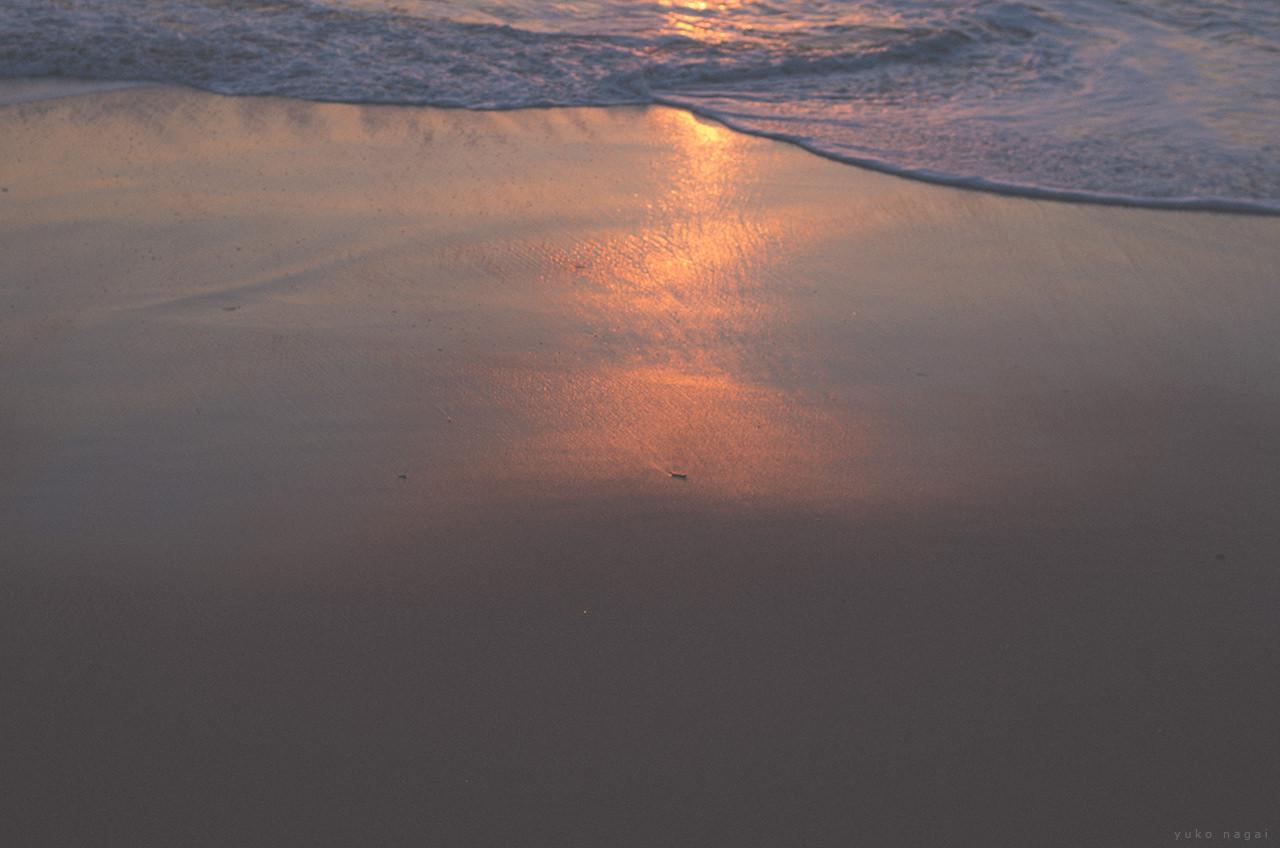 Sea shore in morning light.