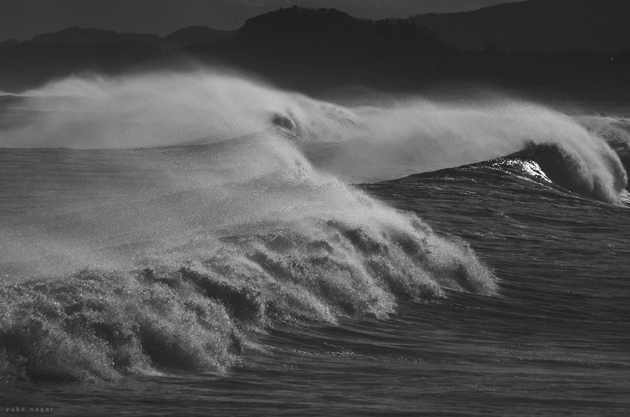 Dynamic Ocean Waves.