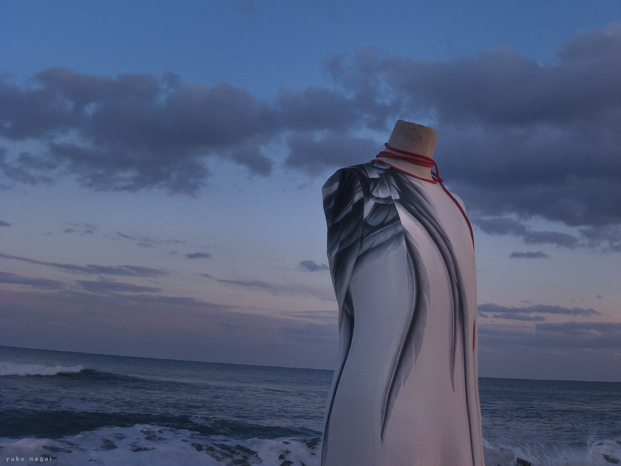 A dress with a dyed wing on the shore.