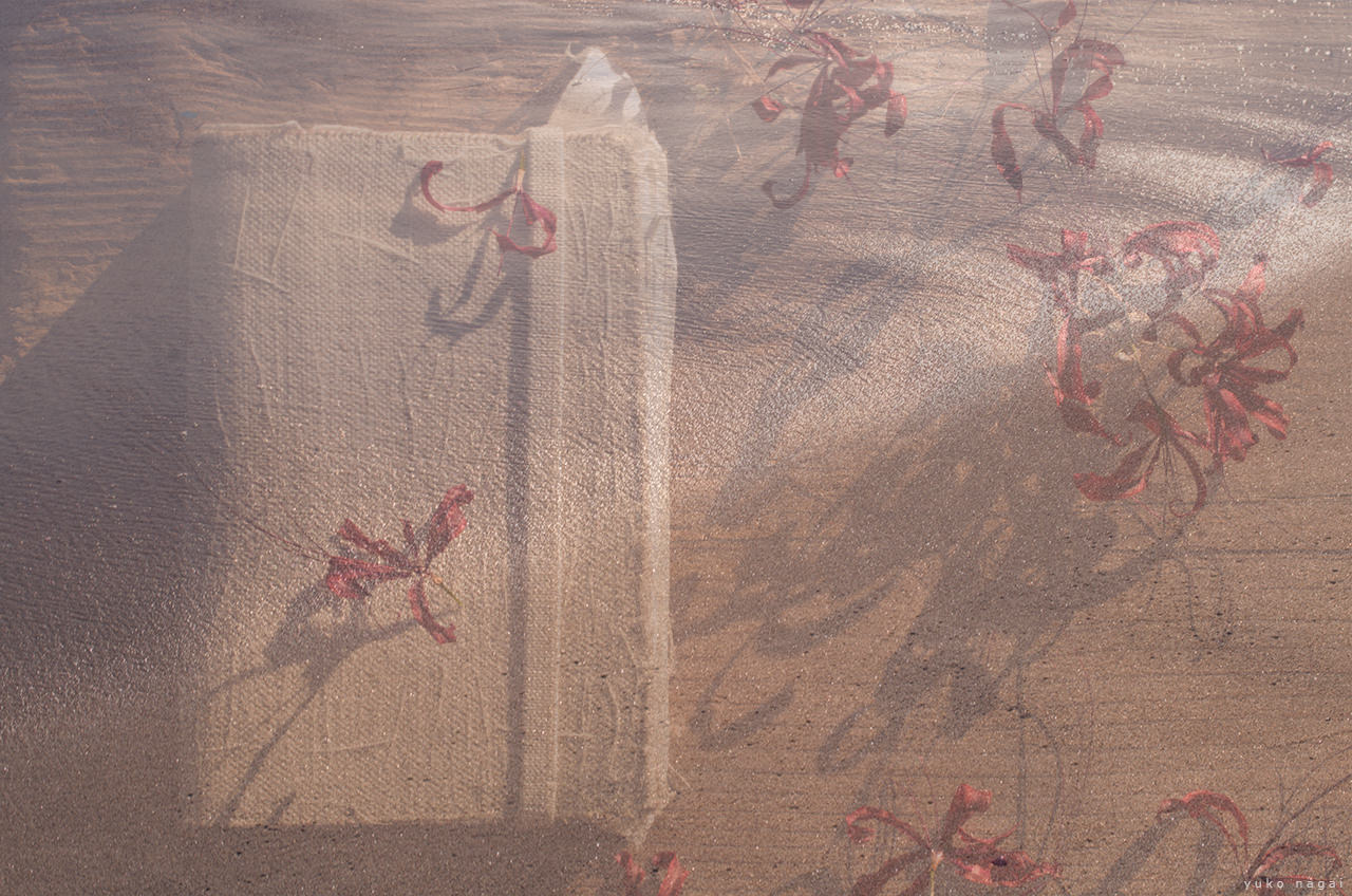 A journal and dried flowers with ocean underlay.