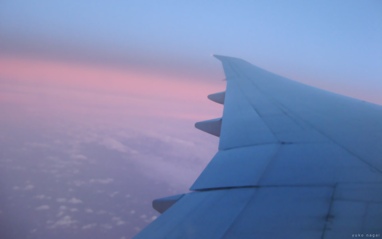 Airplane wing in morning sky.