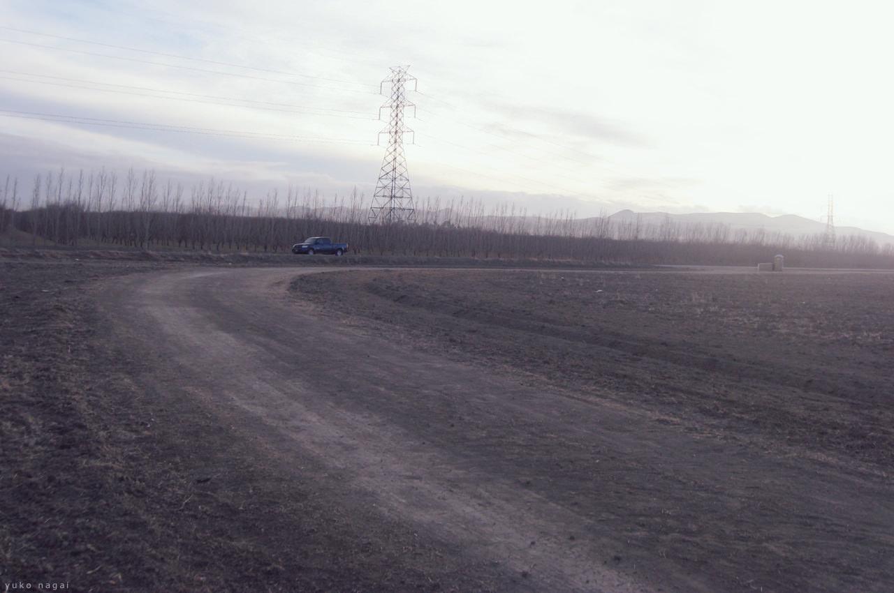 Open farm field.