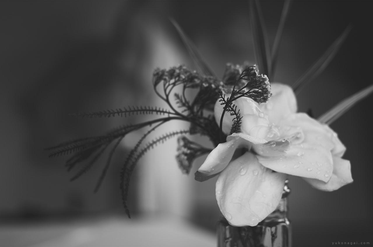 A gardenia bouquet in an artist studio.
