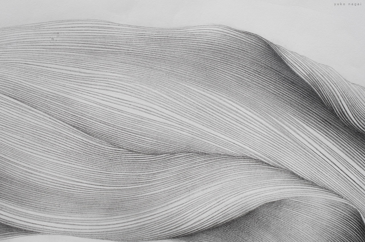 An abstract flower drawing detail.