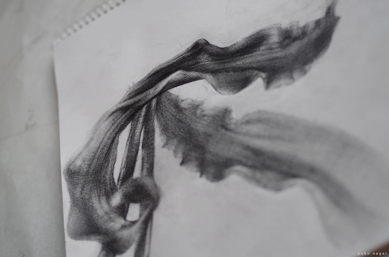 A flower petals pencil drawing.