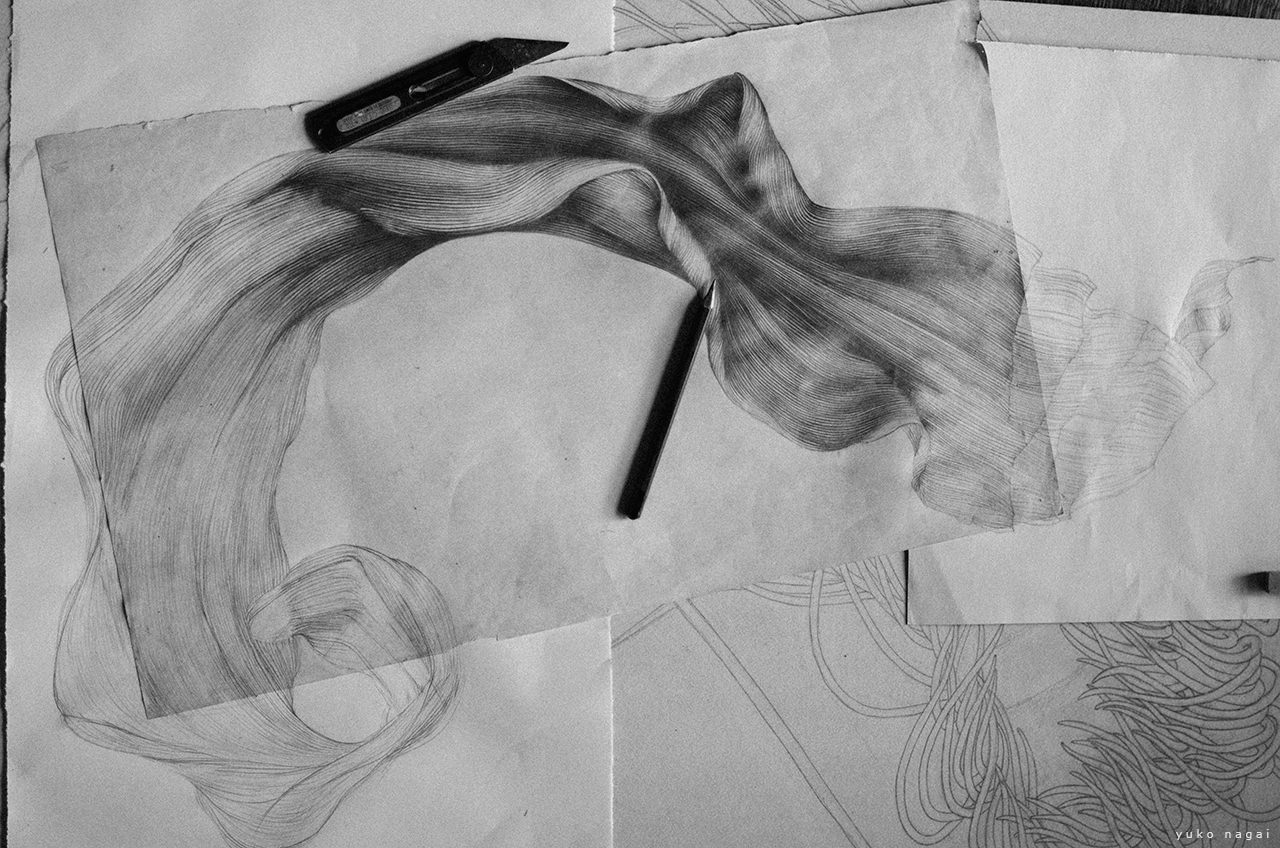 A drawing of a spider lily petal in progress.
