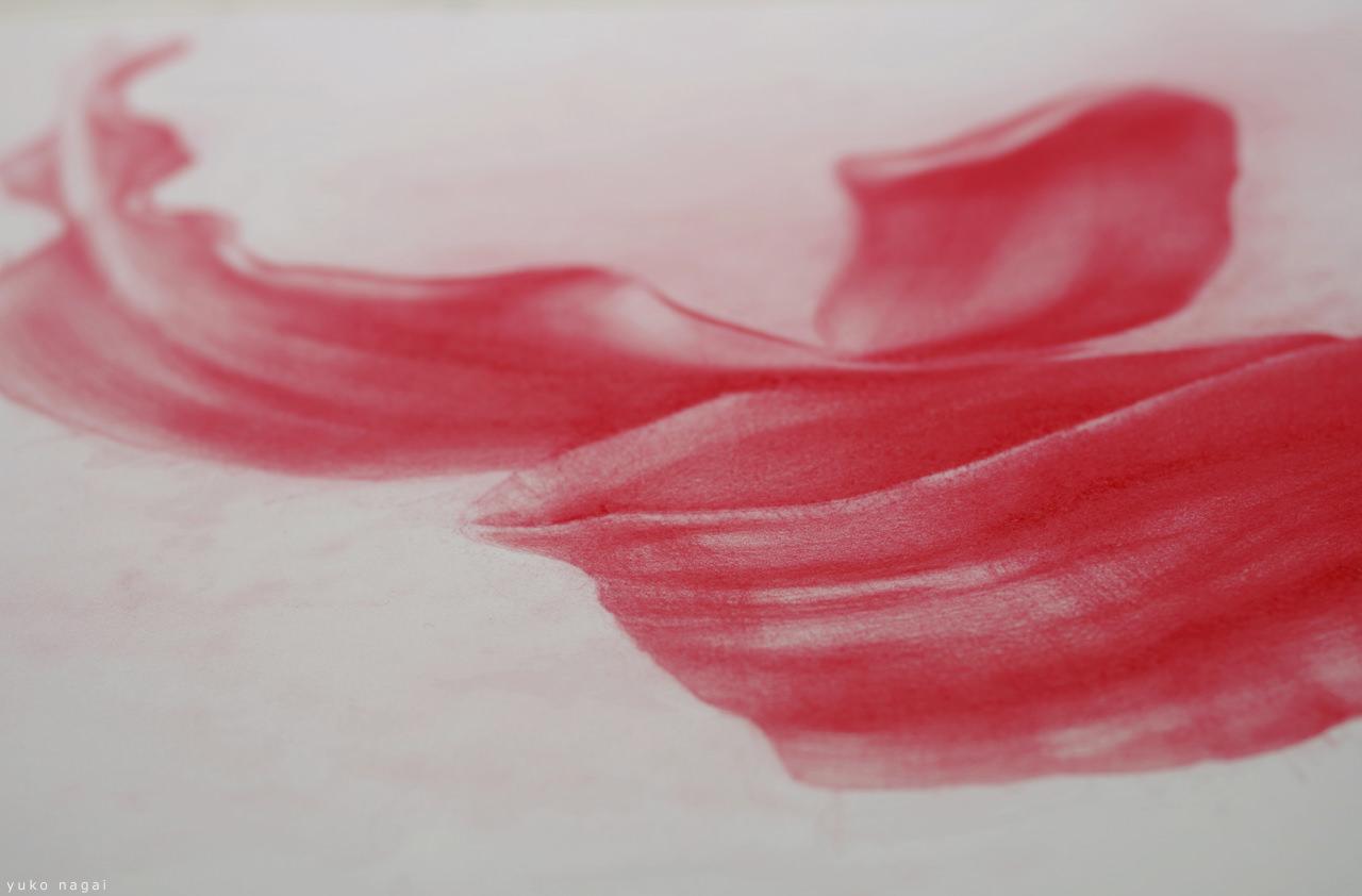 A spider lily petals drawing.