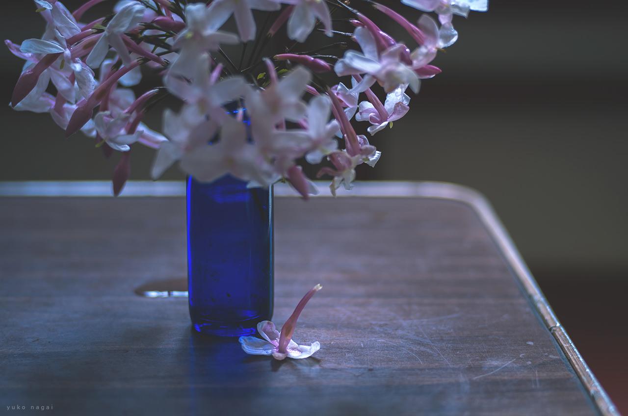 A small Jasmine bouquet.