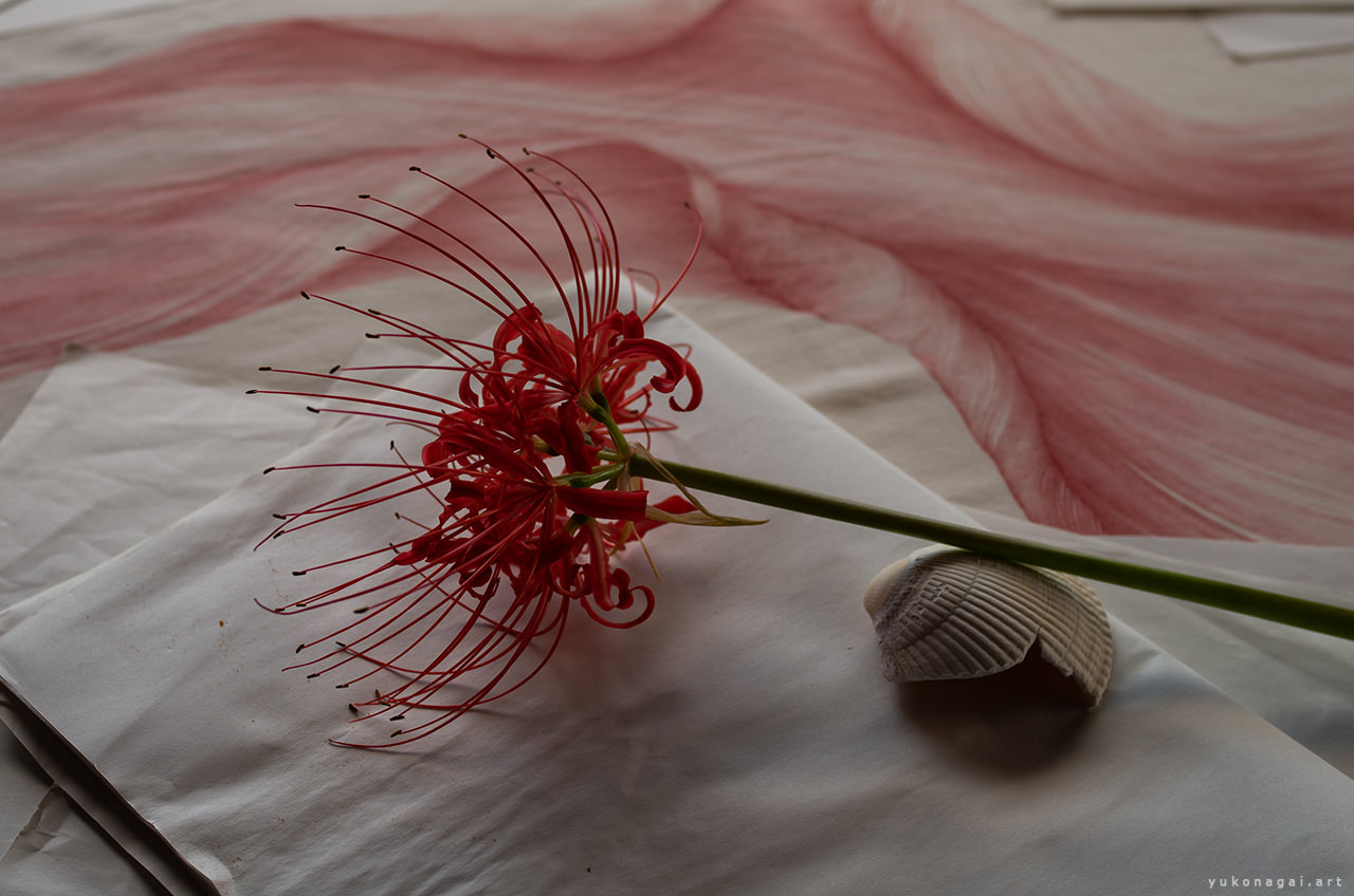 abstract artwork with a lily and a shell.