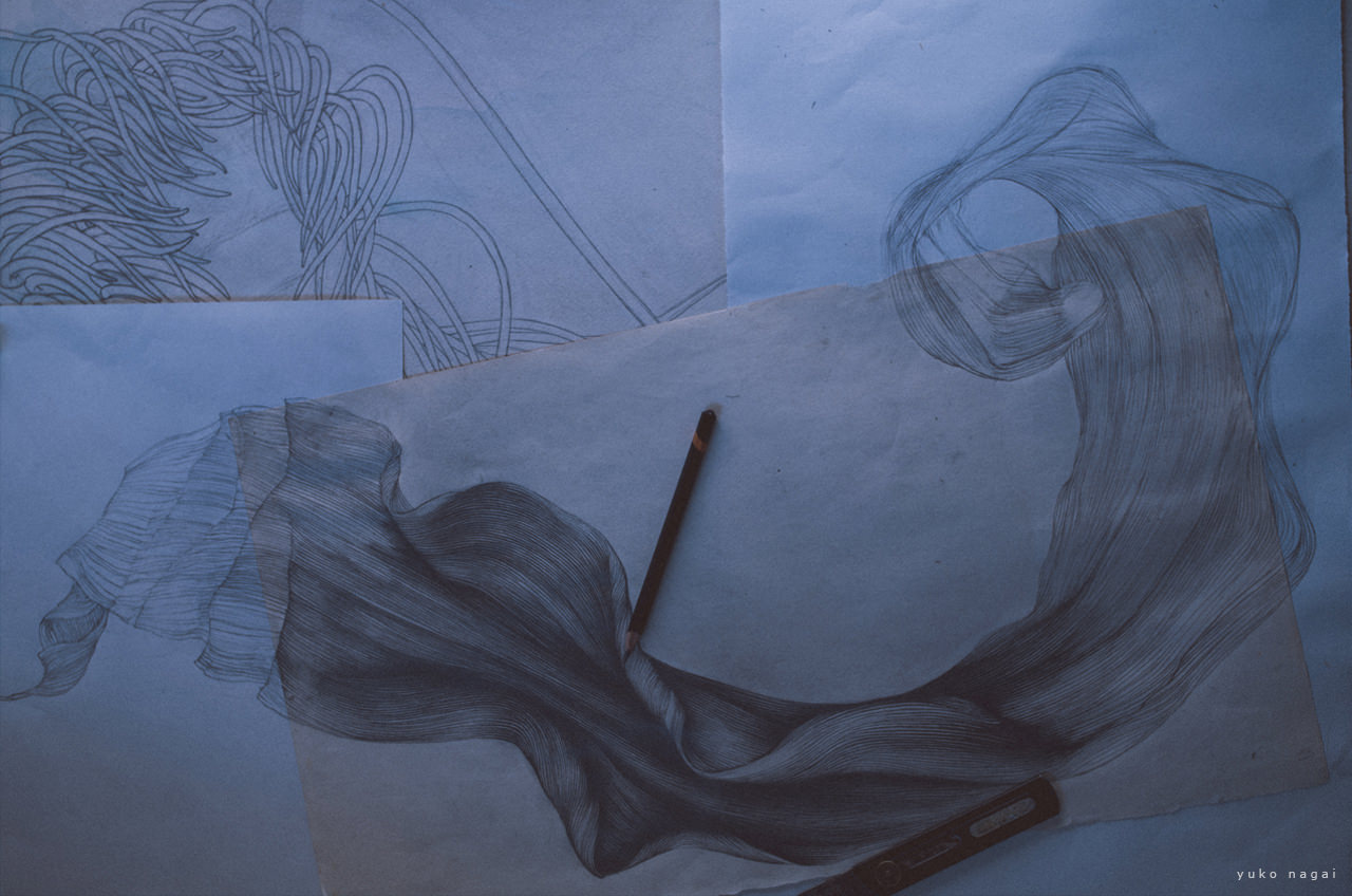 A flower pencil drawing in progress.