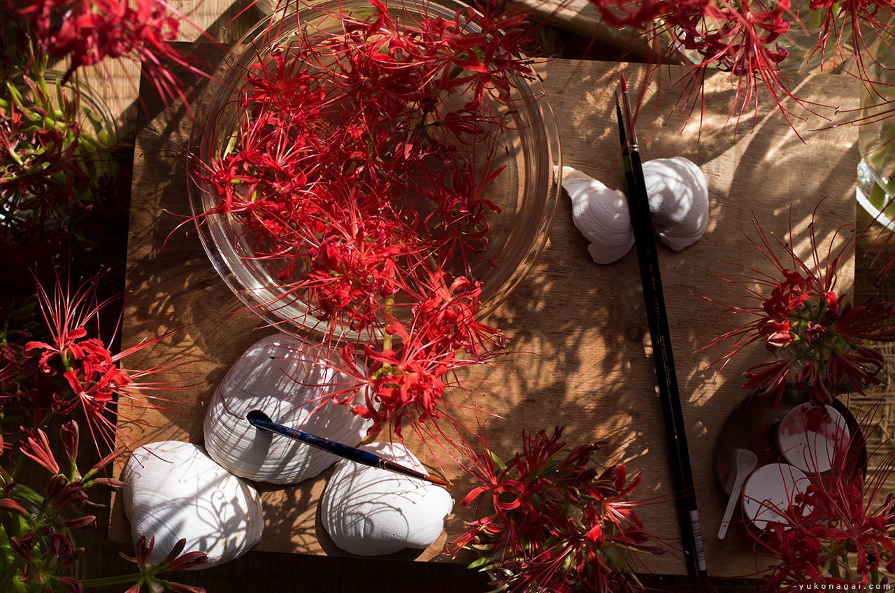 Red Spider Lily blossoms, sea shells and paint brushes.