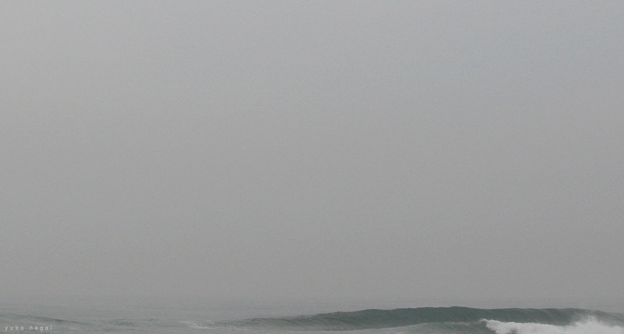 Misty sea with a wave.