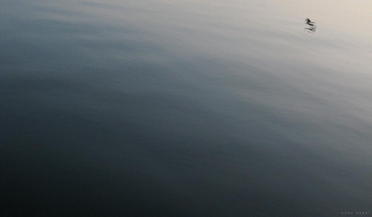 Still sea surface.
