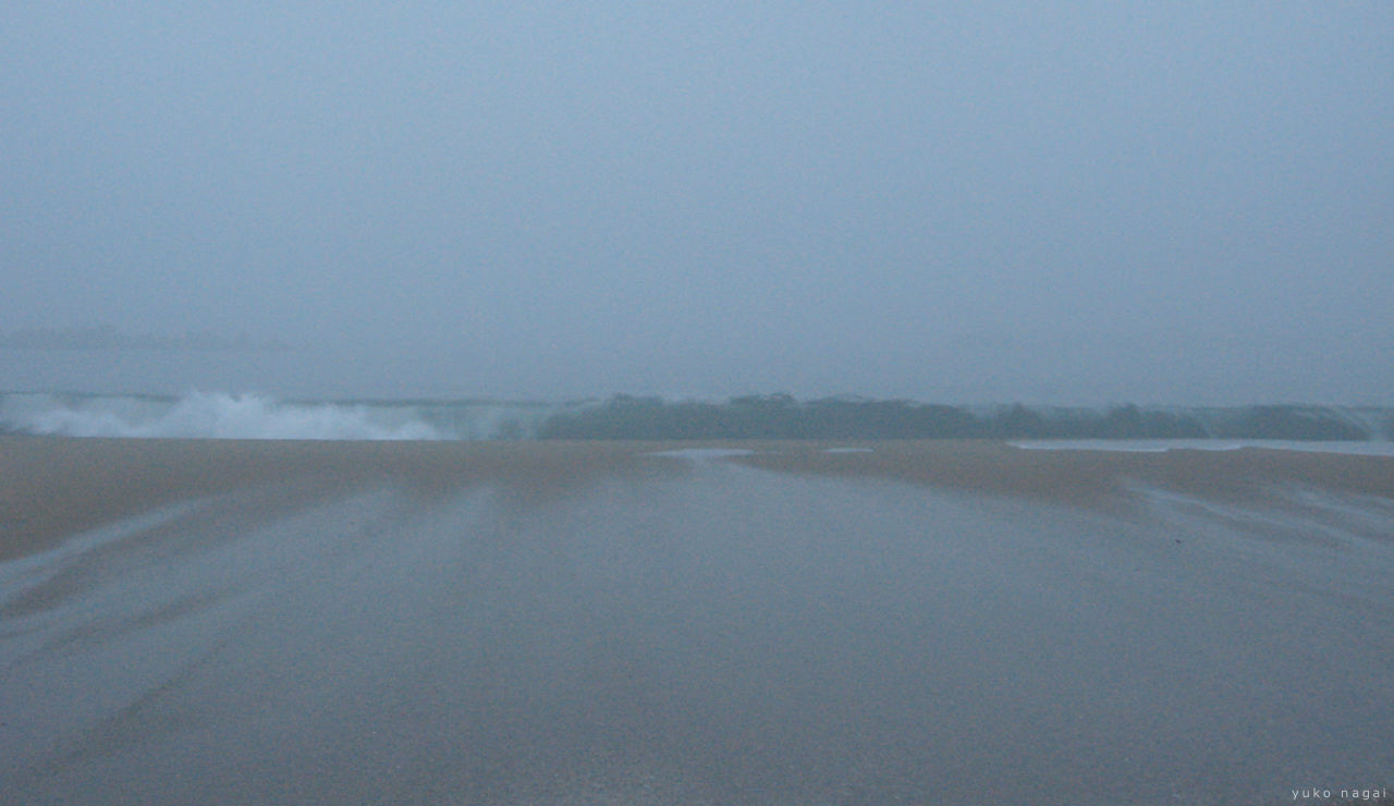 Misty shore with a wave.
